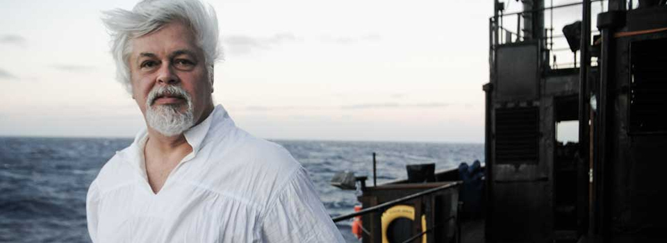From Sea Shepherd and Whale Wars to fighting for the planet with Pharrell: Captain Paul Watson