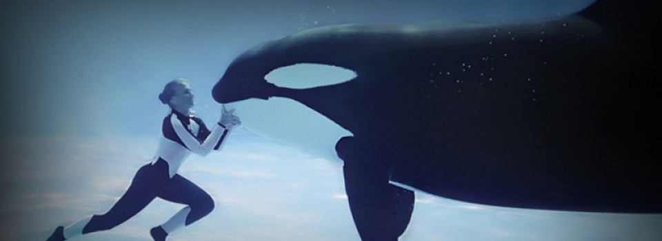The Director of the controversial film Blackfish...Then Former Lead Prosecutor at Gitmo